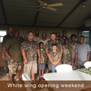 white-wing-afternoon-2016